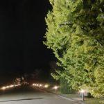 京都府立植物園を訪問
