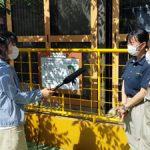 「こちなん!!」10/14は大内山動物園のチンパンジー